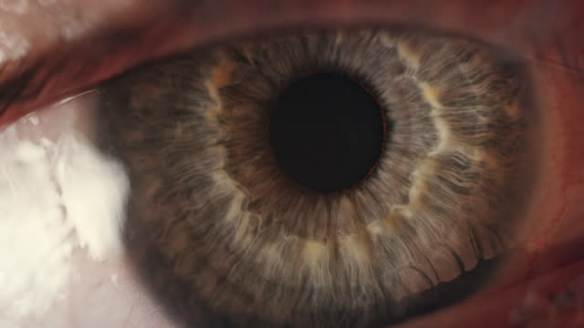 extreme close-up of blue human eye - blue eyes stock videos & royalty-free footage