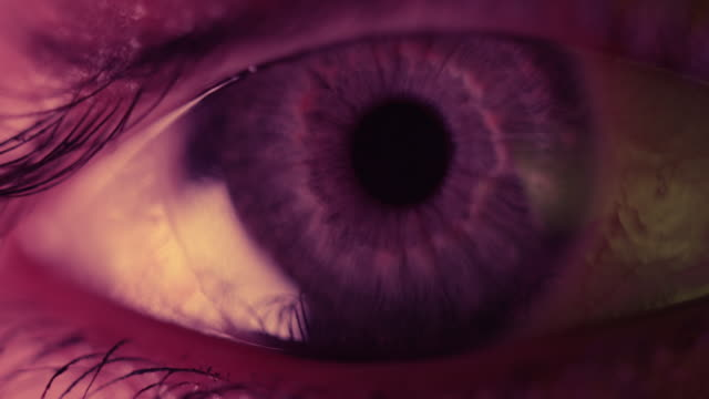 extrem närbild av vampyr eye - anatomi bildbanksvideor och videomaterial från bakom kulisserna