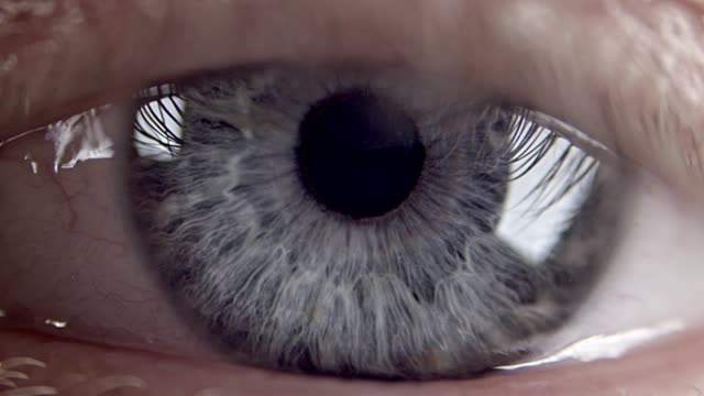 extreme closeup on blue human eye - man blinking stock videos & royalty-free footage