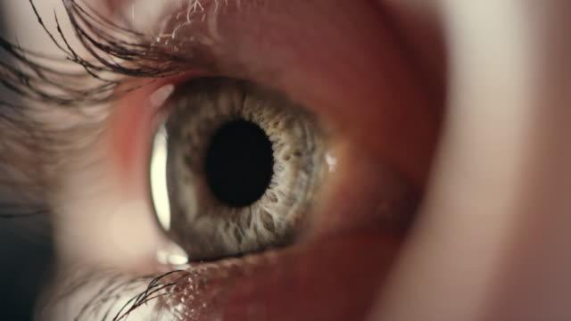vídeos de stock, filmes e b-roll de close-up extremo no olho humano azul - perto de