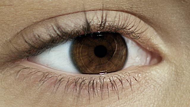 Extreme closeup on brown human eye