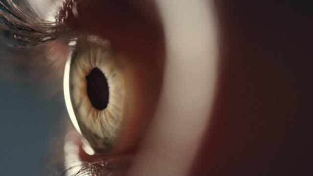 vidéos et rushes de coseup extrême sur l'oeil humain brun - plan très rapproché