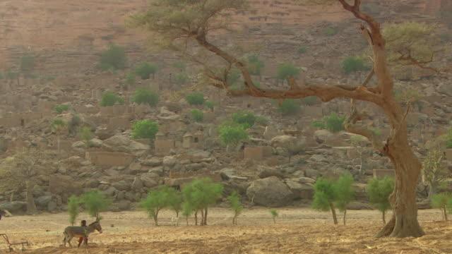 vídeos y material grabado en eventos de stock de extreme long shot of two people using a donkey plough - burro