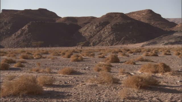 extreme long shot, pan-right - gray hills form a boundary to a shrub-laden desert / egypt - hügelkette stock-videos und b-roll-filmmaterial