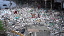 Extreme pollution in Malaysian village with dog walking on garbage