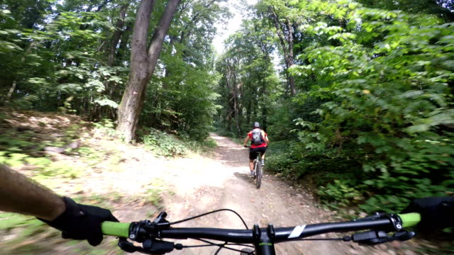 extreme sports enthusiast riding a bike on a dirt trail through the woods - recreational horseback riding stock videos and b-roll footage
