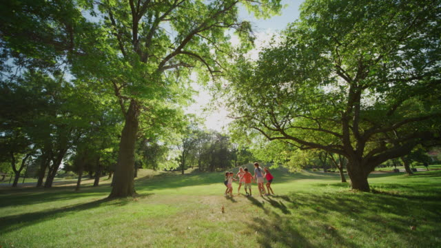 "Extreme wide angle scene featuring seven, multiethnic, adolescent children playing ""Ring-Around-The-Rosie"" under a canopy of large, gnarled Ash trees, with green leaves, green grassy park, and sun refraction in lens."