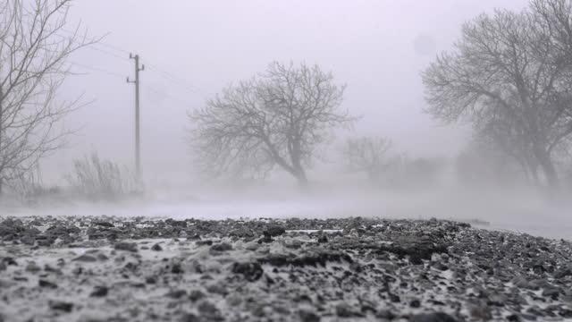 vídeos de stock, filmes e b-roll de tempo extremamente ruim. atraso meteorológico na tempestade de inverno em uma estrada rural. rajadas de vento com neve. nevando com força. questões ambientais. - low angle view