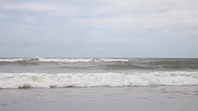 extrme long shot fishing boat in distance ocean isle beach atmosphere june 20 2013 - aquatisches lebewesen stock-videos und b-roll-filmmaterial