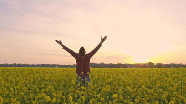 Exuberant farmer with arms outstretched in tranquil,idyllic,rural canola field at sunset,real time