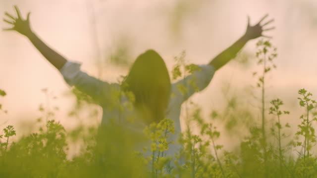 ms exuberant frau mit ausgestreckten in ruhigen, ländlichen raps rapsfeld - schöne natur stock-videos und b-roll-filmmaterial
