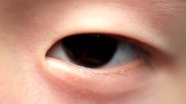 目のクローズアップ