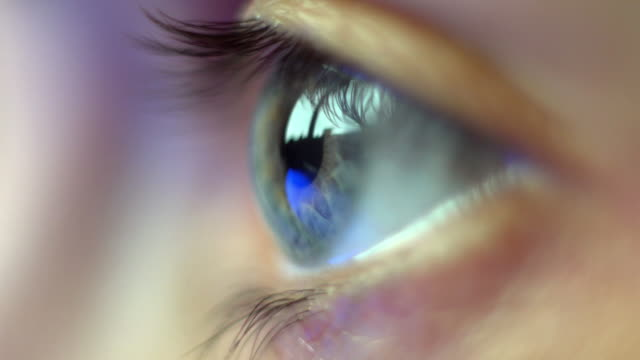 eye from the profile - profilo vista laterale video stock e b–roll