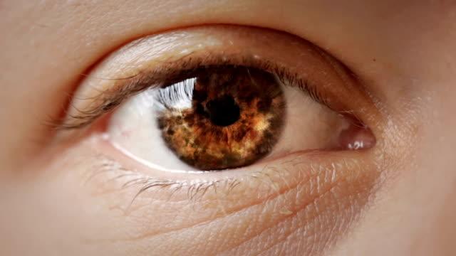 stockvideo's en b-roll-footage met oog - bruin