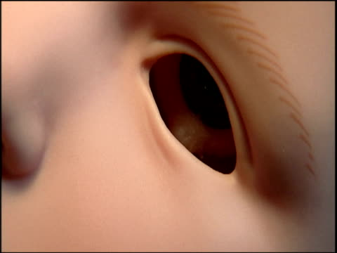 Eyeball placed through socket of doll's head