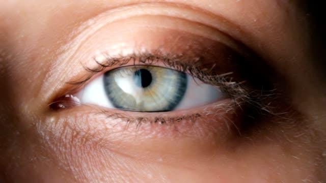 vídeos y material grabado en eventos de stock de foco circular - ojo humano