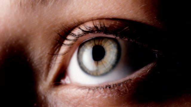 eyeball - cornea stock videos and b-roll footage