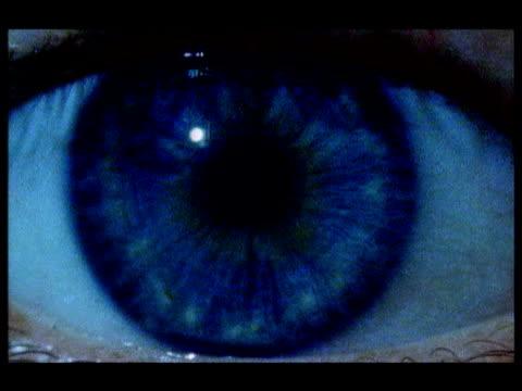 vídeos de stock e filmes b-roll de eyelid opens to show blue iris staring at camera - íris olho