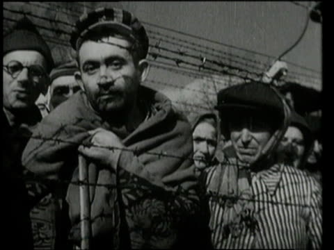 faces of detainees staring through barbed wire fence / auschwitz germany - barbed wire stock videos & royalty-free footage