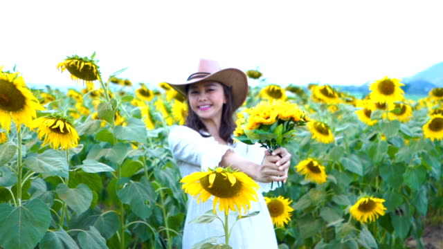 Gesichtsausdruck von Reife Asiatin im Sonnenblumen Feld geben Blume mit Willkommensschild