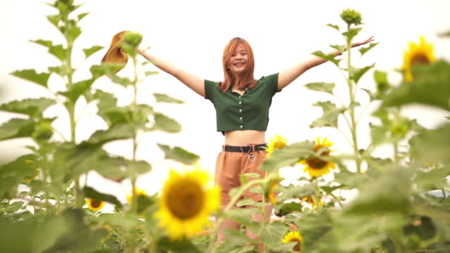 facial expression by asian young woman in sunflowers field , feel freedom with arms outstretched - one teenage girl only stock videos & royalty-free footage