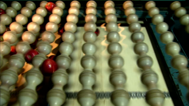 a factory machine coats rows of apples with caramel. - toffee stock videos & royalty-free footage