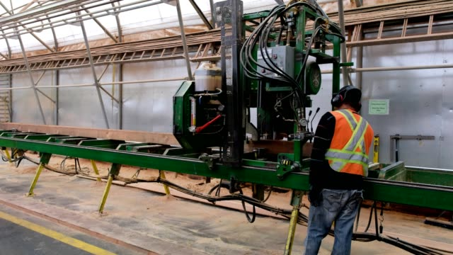 factory worker cuts the timber to size using a large machine - health and safety stock videos & royalty-free footage