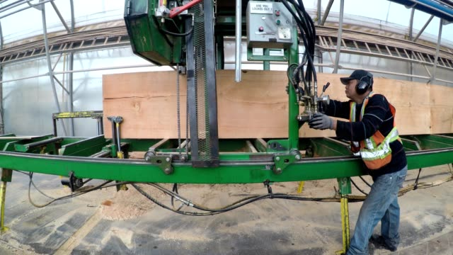 factory worker cuts the timber to size using a large machine - timber yard stock videos & royalty-free footage