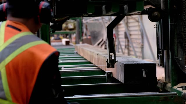 factory worker cuts the timber to size - attrezzatura industriale video stock e b–roll