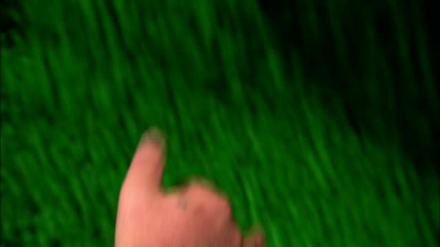 vídeos de stock e filmes b-roll de a factory worker inspects green jellybeans. - coinfeitos