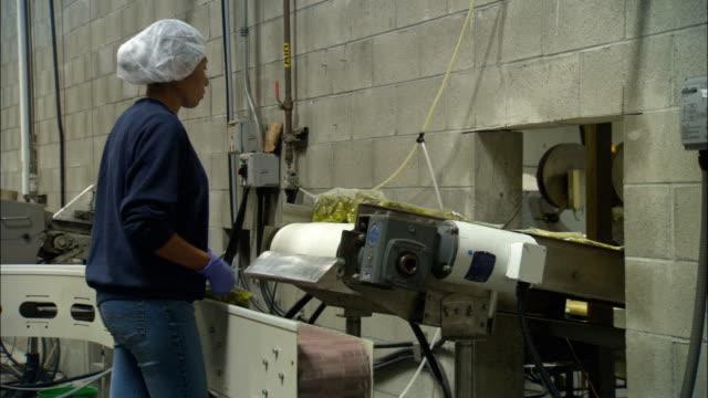 vídeos de stock e filmes b-roll de a factory worker inspects packages as she pulls them from a conveyor. - bata cirúrgica