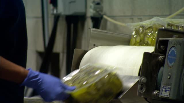 vídeos de stock e filmes b-roll de a factory worker pulls packages off a conveyor. - bata cirúrgica