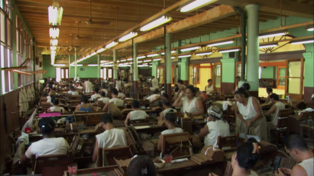 ms, td, factory workers at cigar factory, havana, cuba - ceiling fan stock videos & royalty-free footage