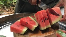 facts about watermelon