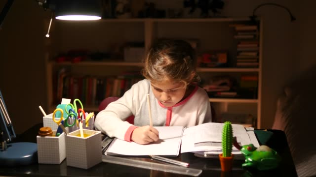 Fade in shot of confident girl writing in book at illuminated table