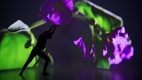 vídeos y material grabado en eventos de stock de proyección de la flor sobre una bailarina de descoloramiento - realidad aumentada espacial