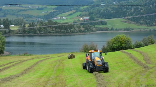fagernes norway farming tractor riding and rolling wheat for cattle with beautiful setting of water and mountains - tractor stock videos & royalty-free footage