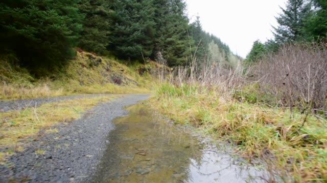 fairy knowe footpath, ayrshire - david johnson stock videos & royalty-free footage