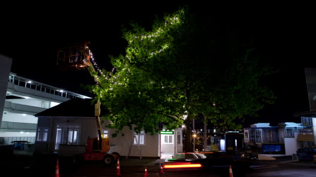 fairy lights being hung in tree - cherry picker stock videos & royalty-free footage