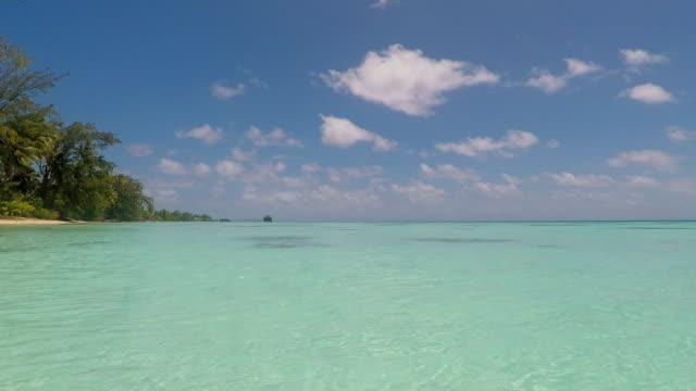 vídeos de stock, filmes e b-roll de fakarava atol atol francês polinésia 4k vídeo turquesa lagoa - oceano pacífico do sul