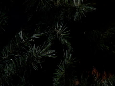falsche christmas tree branches - nadel pflanzenbestandteile stock-videos und b-roll-filmmaterial