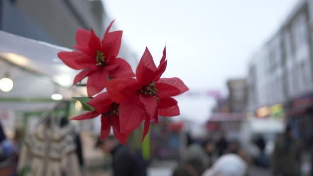 vídeos de stock e filmes b-roll de fake flowers blowing in the wind on portobello road, london - portobello
