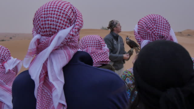 vídeos y material grabado en eventos de stock de falcon display on desert safari near dubai, dubai, united arab emirates, middle east, asia - halcón