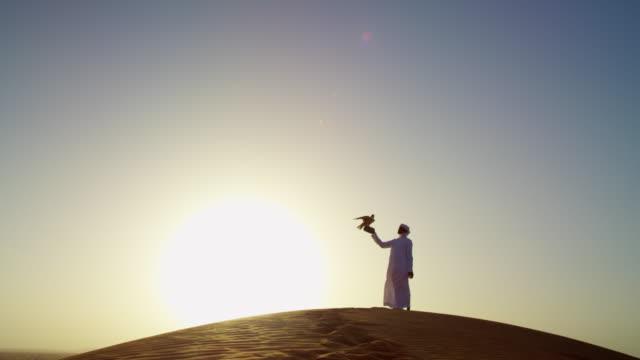 falcon tethered to arab male owner sunset silhouette - 頭飾り点の映像素材/bロール