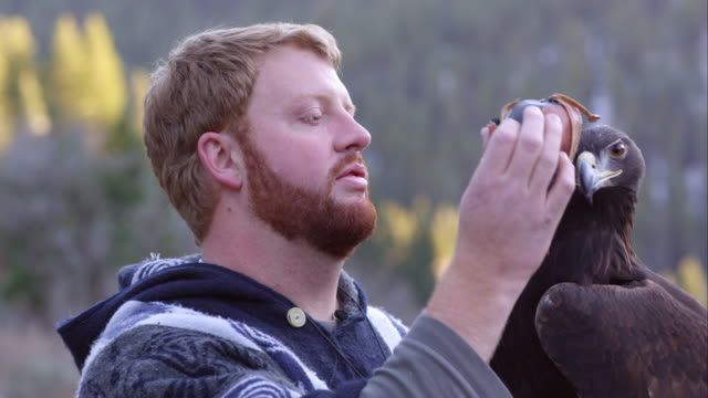 Falconer putting blinding hood on golden eagle.