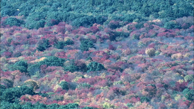 Fall Colors Near Concord  - Aerial View - Massachusetts,  Middlesex County,  United States