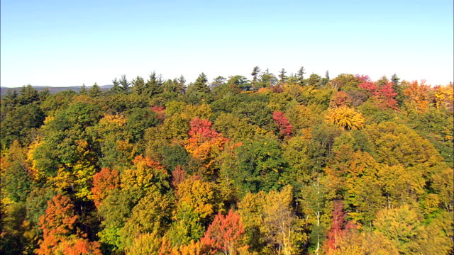 Fall Colors Near Greenville  - Aerial View - Massachusetts,  Franklin County,  United States
