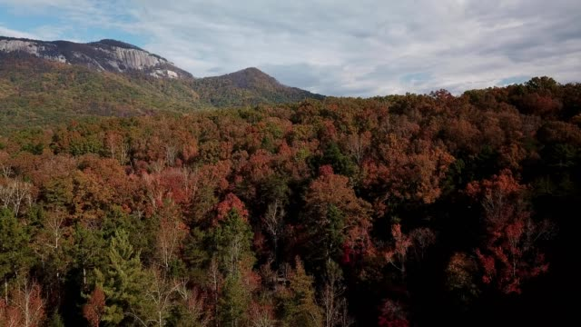 fall colors near table rock state park. - south carolina stock-videos und b-roll-filmmaterial