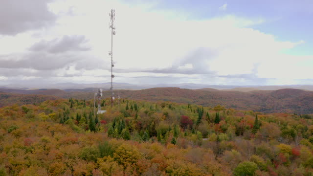 aerial fall colors of a forest in autumn season and cellular antenna - mast stock videos & royalty-free footage