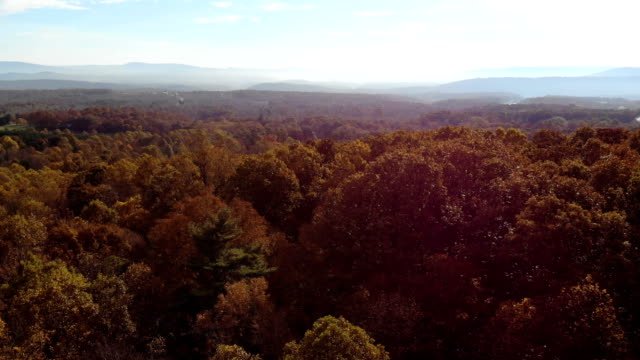 fall colors over maryland - maryland us state stock videos & royalty-free footage